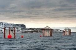 Arctique : le réchauffement favorisera le trafic maritime, pas les routes   Regarder le ciel   Scoop.it