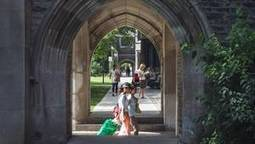 Universities should educate – employers should train | Knowledge management & Learning | Scoop.it