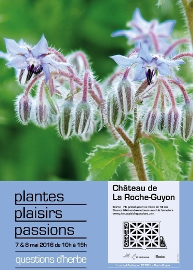 Plantes Plaisirs Passions - La Roche-Guyon - | Infos en Val d'Oise | Scoop.it