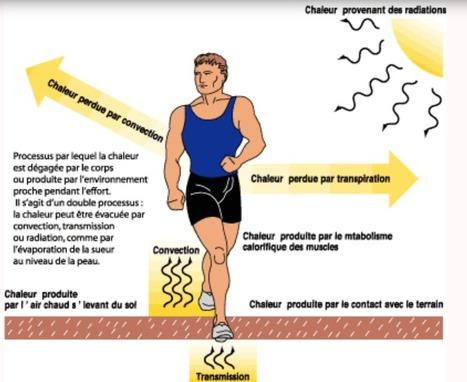 Sports-Physical education- Education physique et sportive
