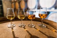 Les exportations de Cognac ont atteint un nouveau record en 2016 | Le vin quotidien | Scoop.it