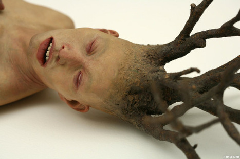 "Choi Xoo Ang: ""Vegetative state"" | art move | Scoop.it"