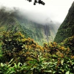 L'Ile de la Réunion, destination écotourisme en France ?   Actus des communes de France   Scoop.it