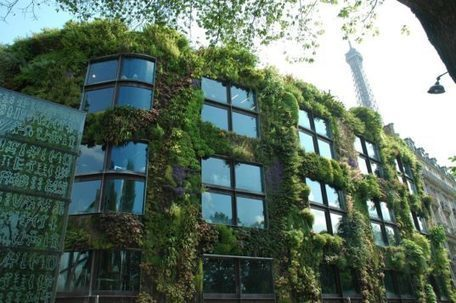 Paris allows anyone to plant an urban garden | The Landscape Café | Scoop.it