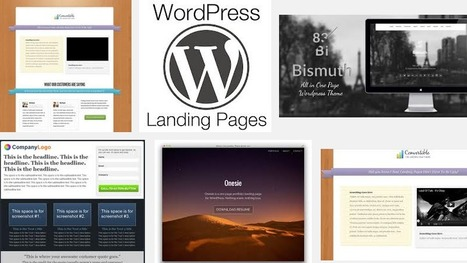 17 Top WordPress Themes To Create Landing Pages And Sales Pages | Blogging Wizard | Links sobre Marketing, SEO y Social Media | Scoop.it