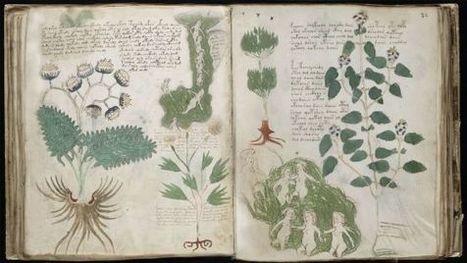 El libro más misterioso del mundo | Reflejos | Scoop.it