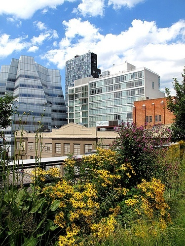 Thinking outside the parks: Green space spreads in the BigApple | Cities of the World | Scoop.it