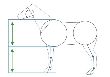 Como dibujar animales – Dibujando un caballo | Dibuja Manga! | Dibujo | Scoop.it