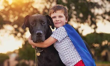 (Empathy and Animals) Why Having A Pet Teaches Your Child Empathy | Empathy and Compassion | Scoop.it