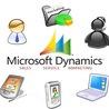 Microsoft Dynamic CRM 2011