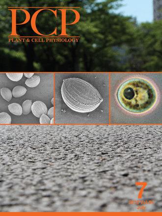 Thermotolerance Responses in Ripening Berries of Vitis vinifera L. cv Muscat Hamburg   Plant Gene Seeker -PGS   Scoop.it