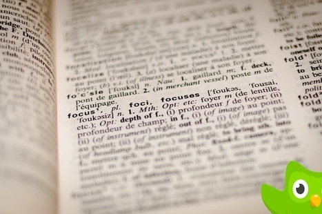 Top 7 Duolingo Alternatives for Better Language Learning | Beebom | Mobile Phones and  Language Learning | Scoop.it