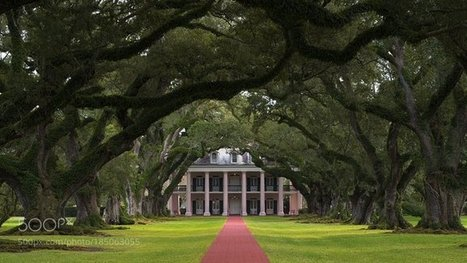 Tweet from @indonesiabray | Oak Alley Plantation: Things to see! | Scoop.it