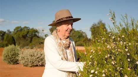 Outback botanic garden blooms   Australian Plants on the Web   Scoop.it