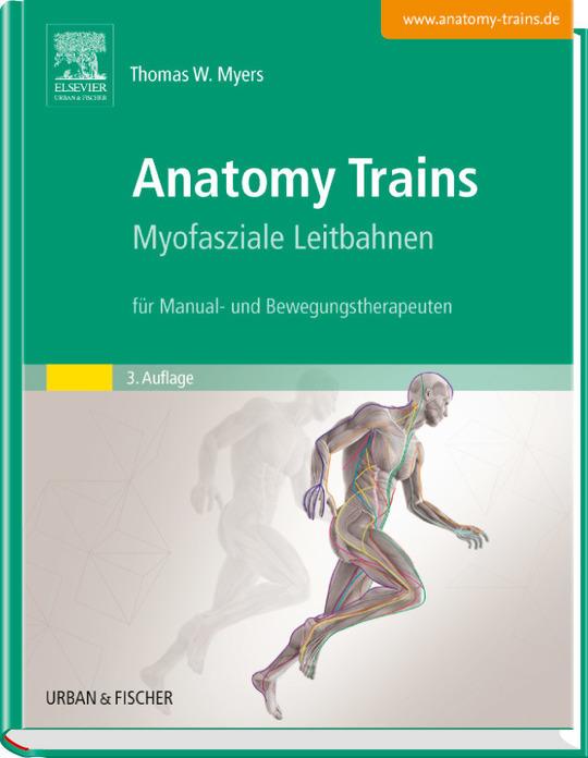 Tom Myers Anatomy Trains Pdf Download   entradc...