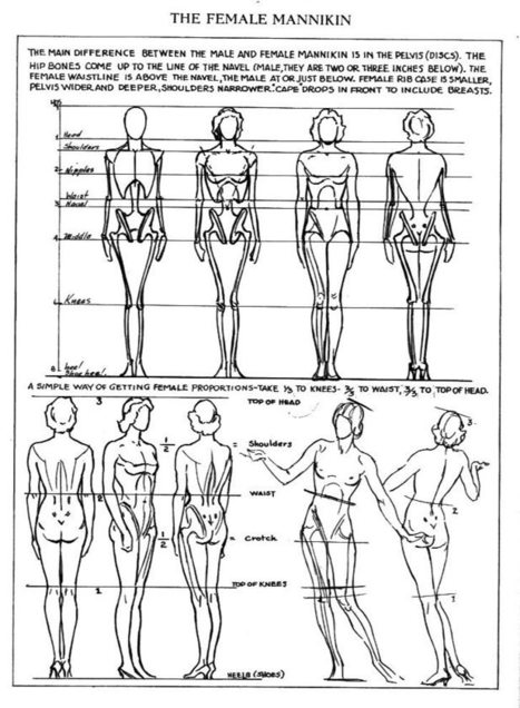 Female Anatomy Drawing Reference Guide Drawin