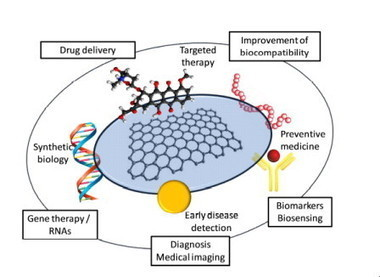 Graphene for multi-functional synthetic biology: the last 'zeitgeist' in nanomedicine | SynBioFromLeukipposInstitute | Scoop.it