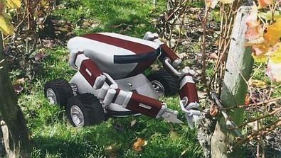 Vin, un robot-vigneron conçu en Bourgogne - France 3 | Des robots et des drones | Scoop.it