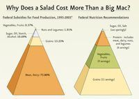 How Federal Food Subsidies Turn the Food Pyramid Upside Down - yearofplenty | Vertical Farm - Food Factory | Scoop.it