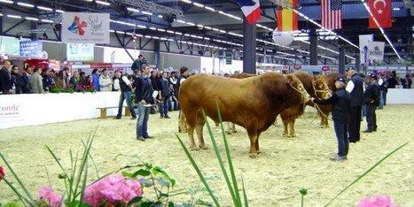 Bordeaux : CEB va-t-il perdre le Salon de l'agriculture ?   Agriculture en Dordogne   Scoop.it