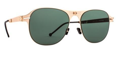 d587fcc91465 eyeglasses store online - Brushed Gold Frame EDA