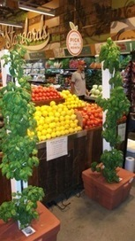 BAY Area Location 2 ... LIVE @ Whole Foods | Vertical Farm - Food Factory | Scoop.it