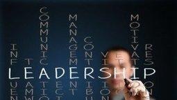 The Leadership Development Gap: Why Do Companies Fail at Training New Leaders?   Leadership   Scoop.it