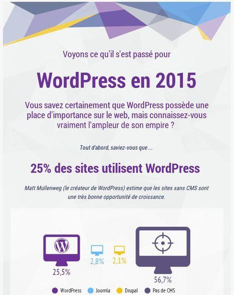 L'année 2015 de WordPress résumée en une infographie   Web, Internet & Transmedia   Scoop.it