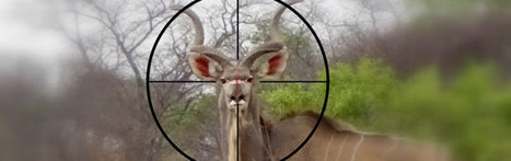 Is Trophy Hunting a Dying Sport? Nikela: helping people saving wildlife | Trophy Hunting: It's Impact on Wildlife and People | Scoop.it
