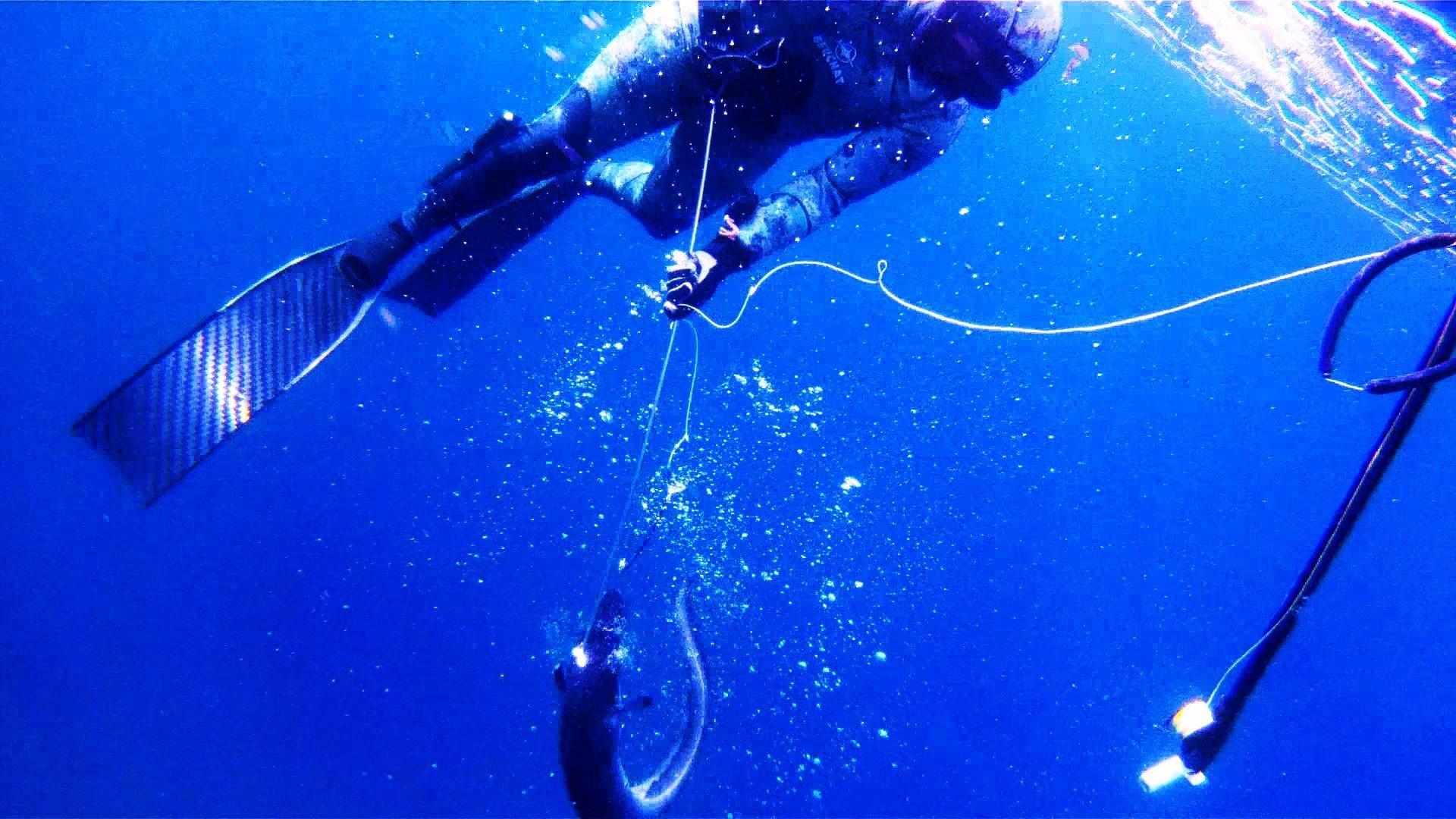 Картинки подводная охота на рабочий стол