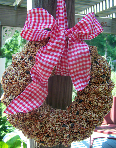 Create a birdseed wreath - Recipe and instructions | Gardening Life | Scoop.it