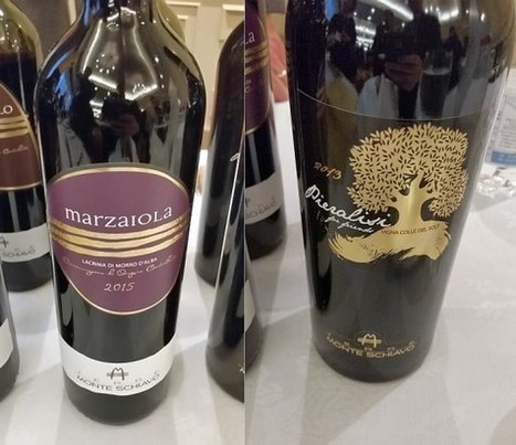 Two Le Marche Wines among the Italian Wines for the Holidays | Wines and People | Scoop.it