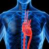 Cardiovascular News & Updates