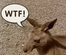 """""""Skippy for dinner"""" – Quoting from 2011 