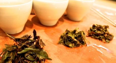 Fair Trade Teas // US Grown Tea – Washington State | Fair Trade Choco-locate | Scoop.it