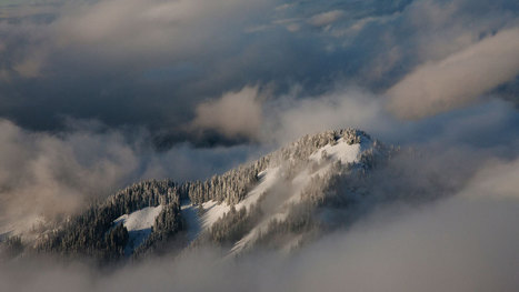 Snow Fall: The Avalanche at Tunnel Creek | Texten fürs Web | Scoop.it