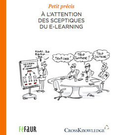 Petit précis à l'attention des sceptiques du e-learning | Former_a_distance | Scoop.it