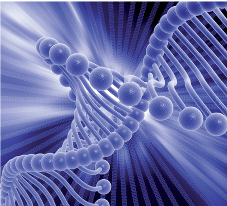 Researchers borrow DNA tricks to identify malware's genetic code | 21st Century Innovative Technologies and Developments as also discoveries, curiosity ( insolite)... | Scoop.it