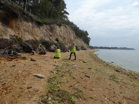 Urgent call for volunteers to survey England's disappearing coastal archaeology | Archaeology News | Scoop.it