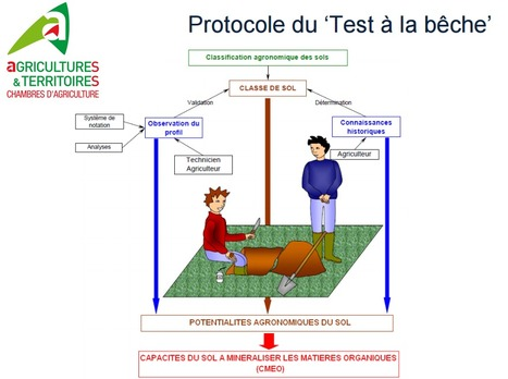 Le 'test à la bêche' est une méthode d'évaluation rapide de la structure ainsi que la qualité d'un sol | SPATEN   Test Bêche | Scoop.it