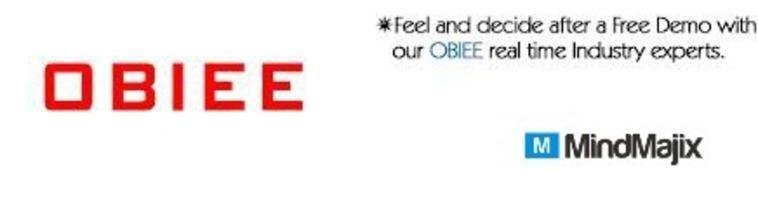 OBIEE Online Training   Online OBIEE Training  