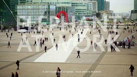Le management fait sarévolution - Elephant Store | Humanités et Management | Scoop.it