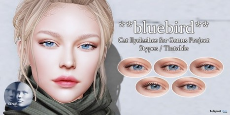 1f4d845d7 Cat Eyelashes for Genus Mesh Head 90L Promo by ...