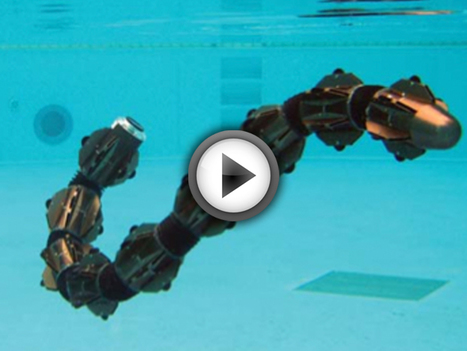 L'ACM-R5, le robot serpent amphibien qui vous coupera l'envie de nager | Art, Design and Imagination | Scoop.it