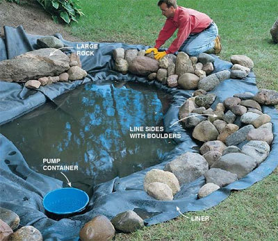 Water Gardening - The 'how to"