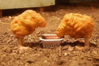 Du poulet nourri aux OGM? Ça se passe comme ça chez McDonald's Europe! | Shabba's news | Scoop.it