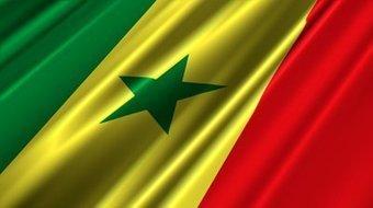 Sénégal: la 1ère Journée nationale de l'artisanat | Actions Panafricaines | Scoop.it