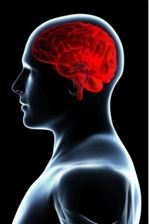 7 Ways to Use Brain Science to Hook Readers | Scriveners' Trappings | Scoop.it