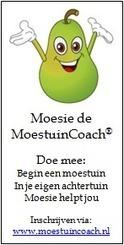 Promotie materiaal | Promote4you (Dutch) | Scoop.it