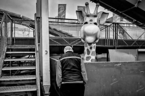 "Enrico Markus Essl ""Not Too Close"" | Top Street Photography News | Scoop.it"